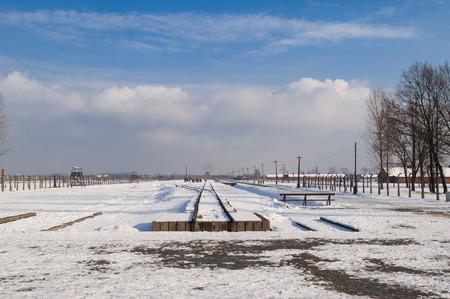 genocide: The Auschwitz-Birkenau State Museum Editorial