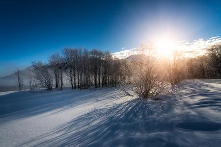winter sunrise: Winter landscape during sunrise