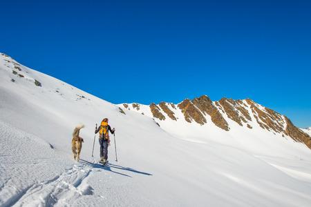mountaineering: Girl makes ski mountaineering with dog. Stock Photo