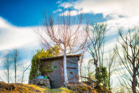 camouflaged: Camouflaged hunting cabin in the meadow between plants Stock Photo