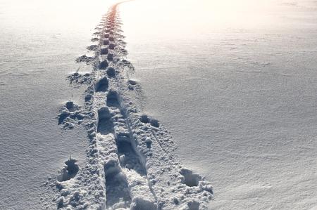 indelible: Footprints in the snow go away towards the sun
