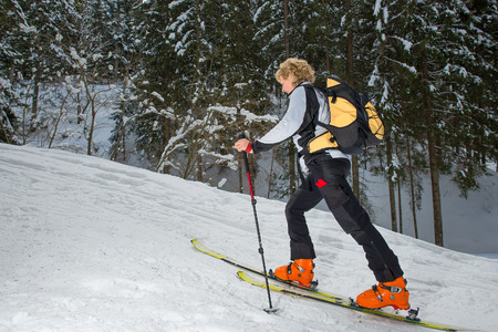 mountaineering: Woman with ski mountaineering uphill in the woods Stock Photo