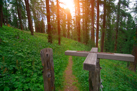 animal private: Rotating wooden passage on mountain trail