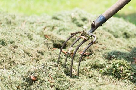 hay: Pitchfork farmer in the hay in the spring