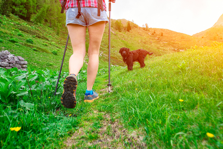 particularly: Particularly the legs of a girl walking with her dog on mountain trail Stock Photo