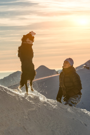 collies: Border collie dog playing in the snow with his mistress in te mountain Stock Photo