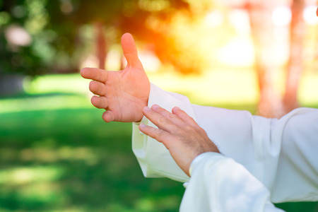 deliberation: practice of Tai Chi Chuan in the park. Detail of hand positions