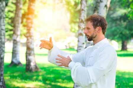 deliberation: An instructor practice  of Tai Chi Chuan in the park. Detail of hand positions Stock Photo