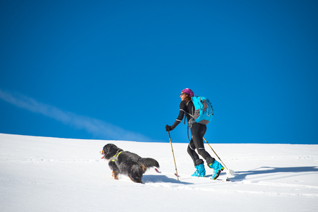 Girl ski mountaineer mountain salt alone with his dog Bernese Mountain Dog in the snow