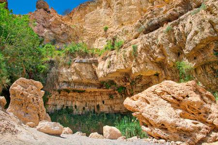 Oasis of Ein Gedi National Park in Israel in rping