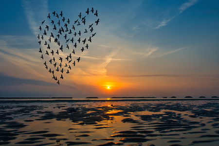 Birds silhouettes flying above the sea against sunrise in the form of heart.