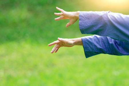 Detail of hand positions of a practicing of Tai Chi Chuan in outdoor.. Stock Photo