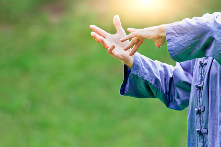 Tai Chi Chuan. Chinese martial art. Stock Photo