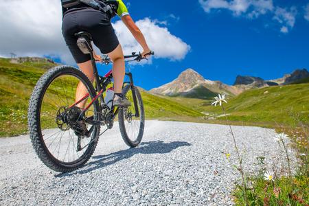 Daisy flower beside a mountain road with a biker passing in mountan bike