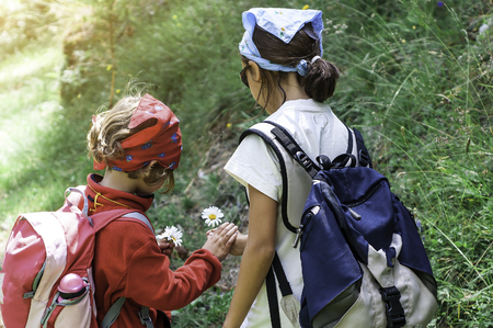 Two little girls on a hike gather flowers. Stock Photo