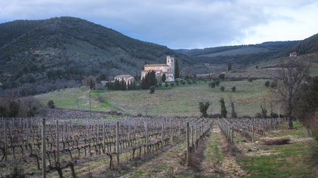 SantAntimo Abbey in Tuscany with the nearby vineyards.