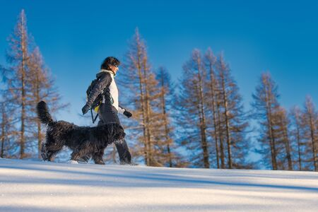 Girl walking with her dog in the snow