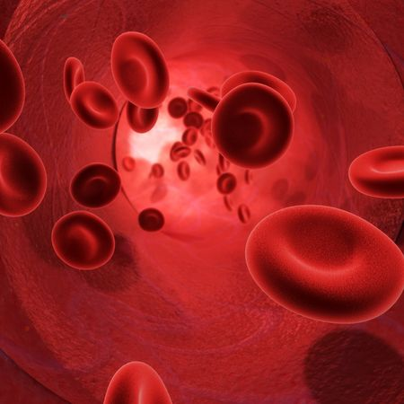 3d image of the flow of blood inside an artery Stock Photo - 5631507