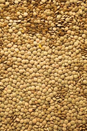 Macro shoot of lentils texture photo