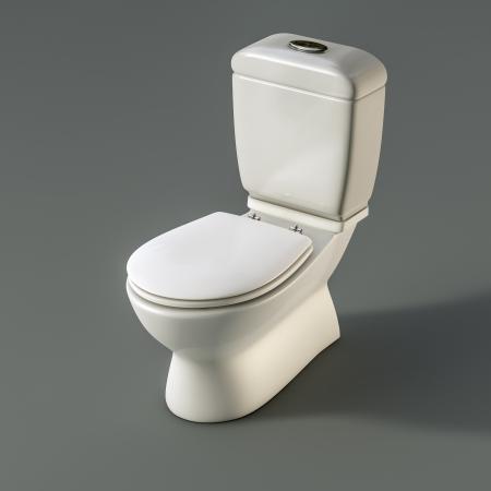 water closet: WC