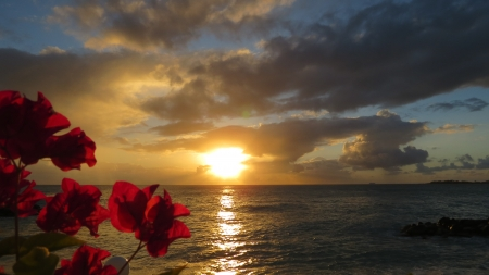 simpson: Beach Sunset