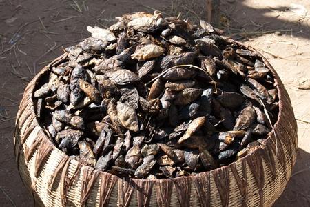 Szárított hal fogott Niger folyó Mali (Acrica). Stock fotó