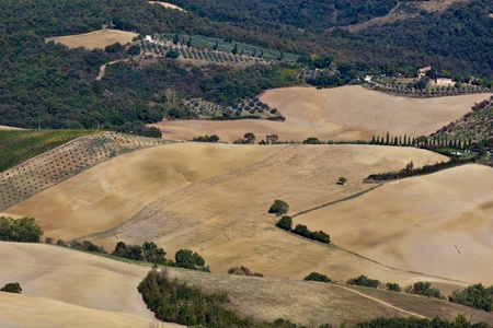 montepulciano: Tuscan landscape in autumn near Montepulciano city (Italy). Stock Photo