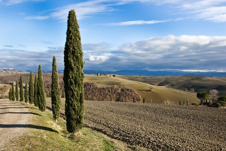 Tuscan landscape in winter, Val d'Orcia (Italy). Stock Photo - 11951089
