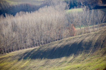val dorcia: Farmland in Val dOrcia, Tuscany (Italy).