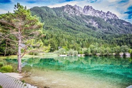 Jasna-tó közelében Kranjska Gora, Szlovénia Stock fotó