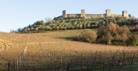 Vineyards in front of the medieval walled town of Monteriggioni in Tuscany, Italy photo