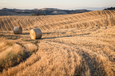 Hay bales and rolling landscape at sunset near Montepulciano, Tuscany, Italy Stock Photo