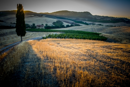 Sunset on the Tuscan hills Banque d'images