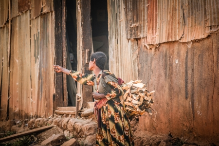 Woman carrying a large bundle of firewood along the road on December 23, 2008, in Dilla, Ethiopia Banque d'images