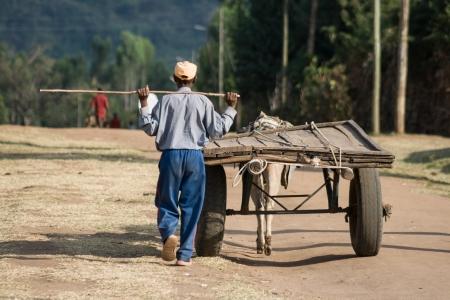 Jinka, Etiópia - december 26, 2008 Farmer mellett gyalogolt a kocsit húzott egy szamár december 26-án, 2008-ben Jinka, Etiópia