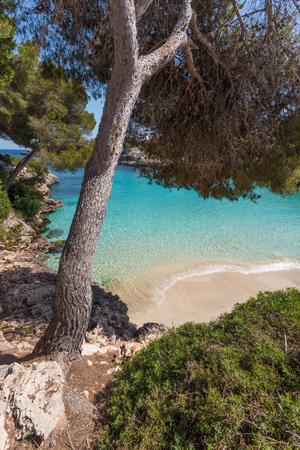 Cala Esmeralda is located next to Cala dOr center in the southeast of Majorca.