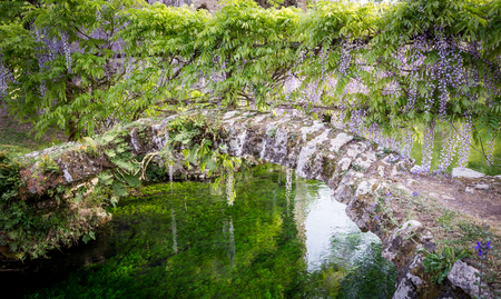 Small ancient bridge and plants of wisteria in the Garden of Ninfa in the province of Latina, Italy, Europe. Banque d'images