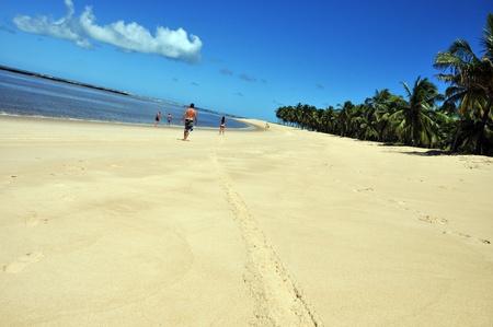 liquid state:  gunga beach Stock Photo