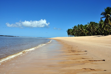 some pictures of gunga beach Stock Photo - 10195061
