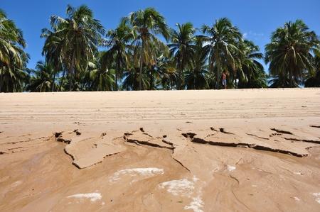 some pictures of gunga beach Stock Photo - 10195166