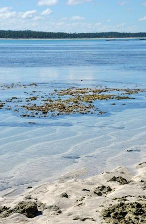 pools of maragogi - brazil photo