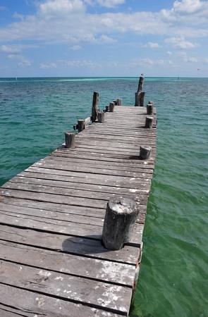 wodden pier in cancun photo