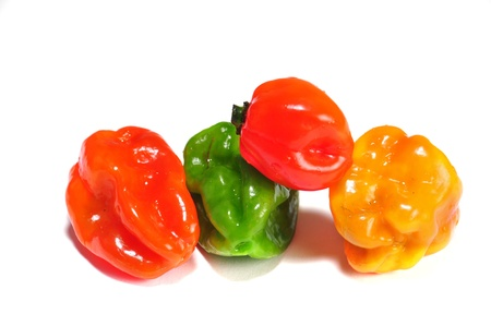 habanero: the real hot chilli peppers from mexico