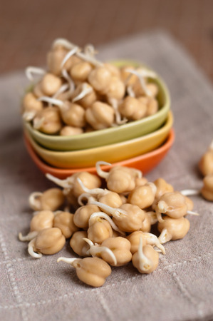 fresh chickpea sprouts ready to be cocked Stock Photo - 29000180
