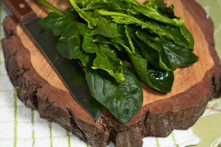 green and fresh spinach a bomb of antioxidants