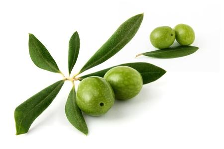 Olive grün auf weißem Hintergrund
