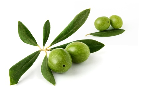 Olive green on a white background Stock Photo