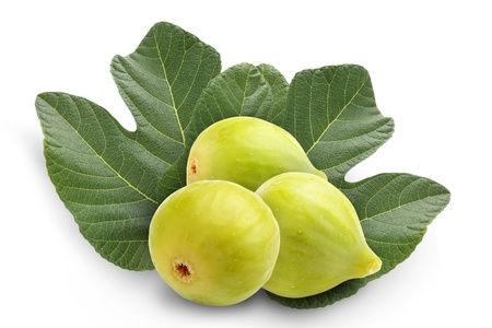 Figs and green leaves