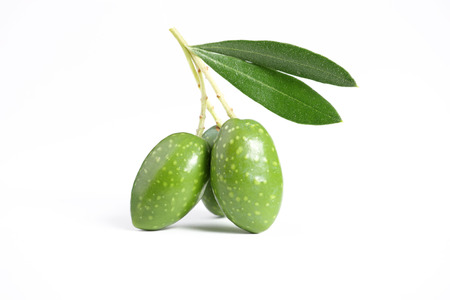 Three young green olives