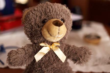 Teddy con le braccia aperte
